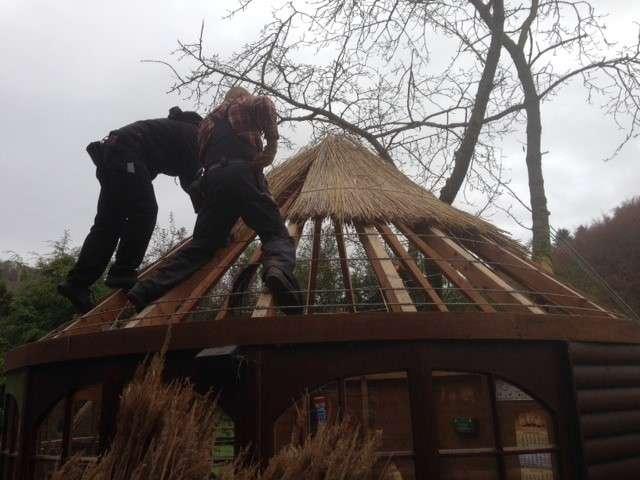 Winterpause, aber keine Winterruhe - Neues Dach für die Aufzuchtstation