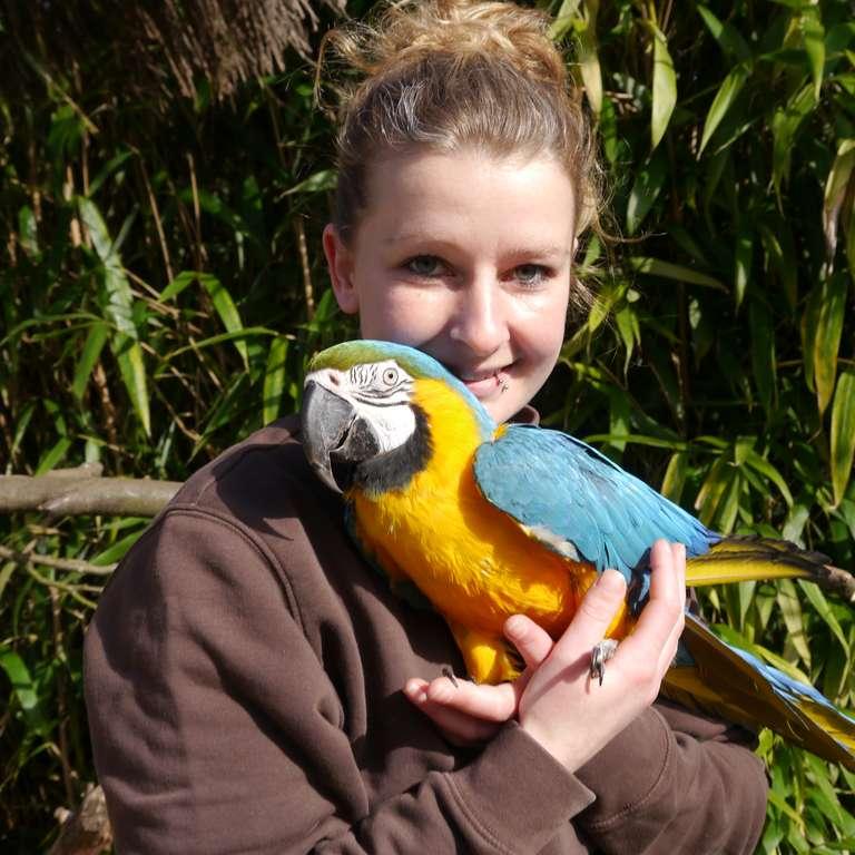 50 Jahre auf Tuchfühlung mit den Tieren - Tierpflegerin Kristine Böhm und Gelbbrustara Paula freuen sich auf die Jubiläumssaison. - Vogelpark Heiligenkirchen öffnet am 23. März