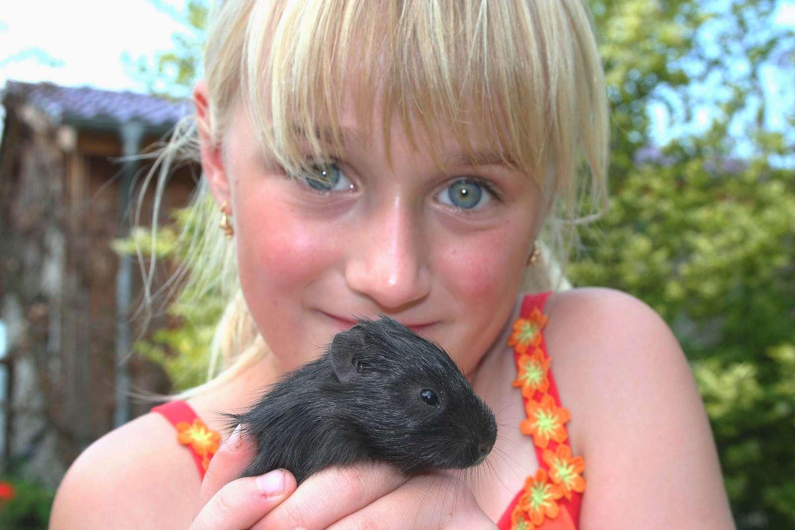 Pelziger Nachwuchs - Die kleine Tabea mit einem wenige Tage alten Wildmeerschweinchen - Bei den Wildmeerschweinchen wurden Vierlinge geboren. Obwohl erst wenige Tage alt, erkunden die Kleinen, von ihrer Mutter geführt, im Sauseschritt ihr Gehege.