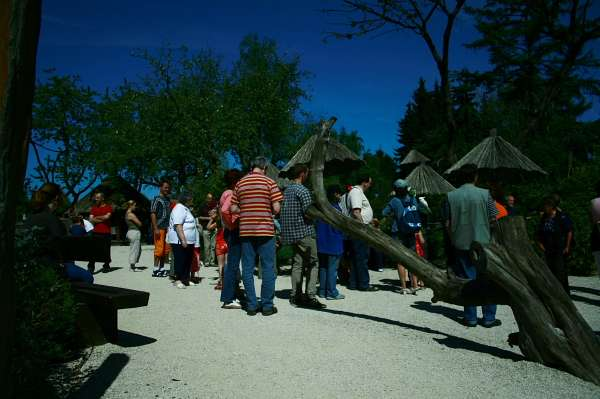 """Blindenfreundlich - zahme Papageien - Der Lippische Blinden- und Sehbehindertenverein e.V. hat nach gründlicher Prüfung und Umfragen bei Betroffenen den Vogelpark Heiligenkirchen als die """"blindenfreundliche Einrichtung"""" ausgewählt."""
